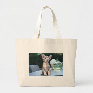 Gatito siamés en una tabla bolsas