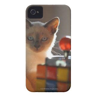Gatito siamés iPhone 4 Case-Mate carcasa