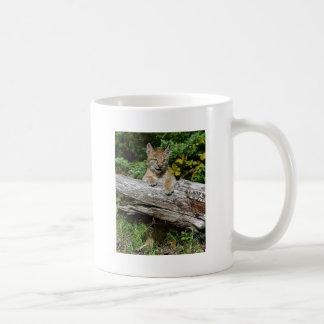 Gatito siberiano del lince tazas