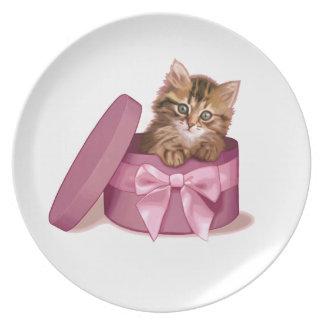 Gatito siberiano plato de cena