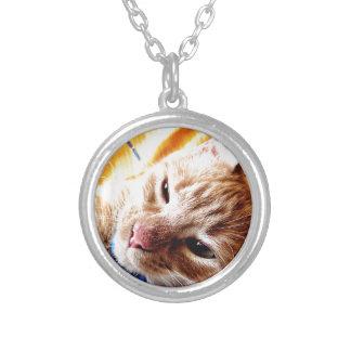 Gatito soñoliento collar plateado