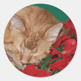 Gatito soñoliento del navidad pegatina redonda