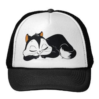 Gatito soñoliento del Pussyfoot Gorro