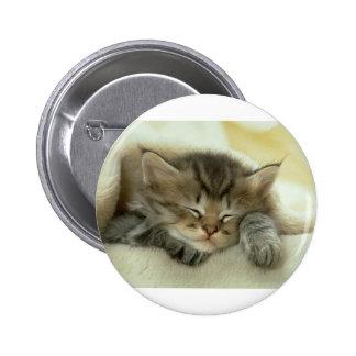 Gatito soñoliento del tiempo de la siesta pin redondo de 2 pulgadas