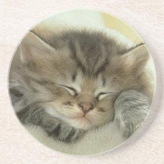 Gatito soñoliento del tiempo de la siesta posavasos de arenisca