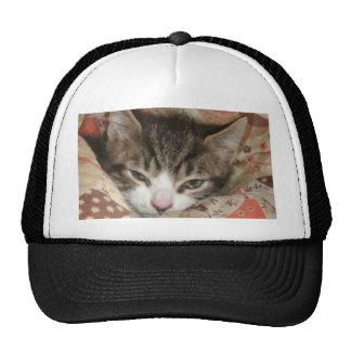 Gatito soñoliento gorras