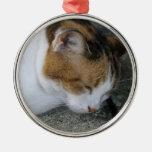 Gatito soñoliento ornamente de reyes