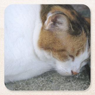 Gatito soñoliento posavasos personalizable cuadrado