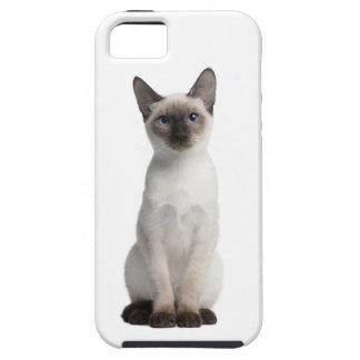 Gatito tailandés iPhone 5 carcasas