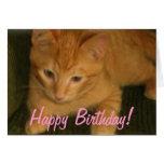 """Gatito """"tarjeta de cumpleaños del DÍA de PURFECT"""" Tarjeta Pequeña"""