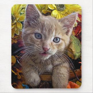 Gatito tonto del gato del gatito del Tabby, colore Tapete De Raton