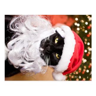 Gatito triste de Franny Claus Santa Postales
