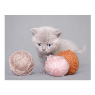 Gatito y bolas postales