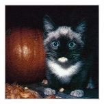 Gatito y calabaza para Halloween Invitación 13,3 Cm X 13,3cm