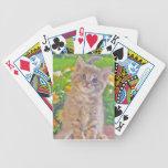 Gatito y flores cartas de juego