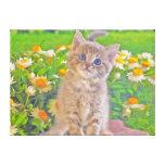Gatito y flores lienzo envuelto para galerias