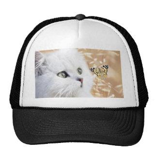 Gatito y mariposa blancos gorras