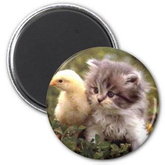 Gatito y polluelo del bebé imán redondo 5 cm