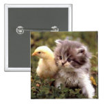 Gatito y polluelo del bebé pin