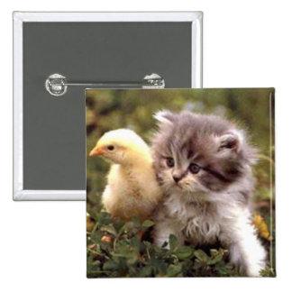 Gatito y polluelo del bebé pin cuadrado