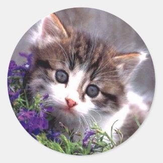 Gatito y violetas pegatina redonda