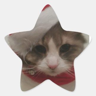 Gatitos 2 del navidad pegatinas forma de estrellaes personalizadas
