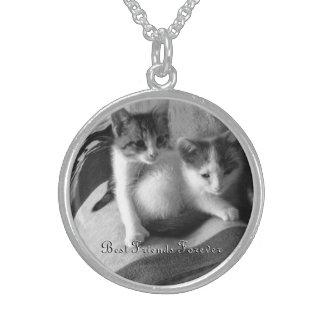 Gatitos Abbie y collar de la plata esterlina de