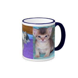 Gatitos abisinios taza de café