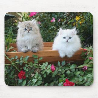 Gatitos acogedores tapetes de ratón