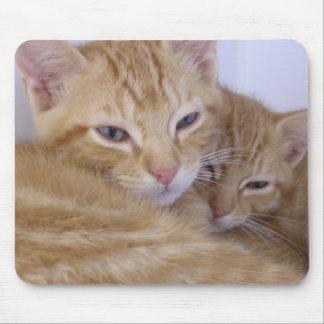Gatitos anaranjados tapete de ratones