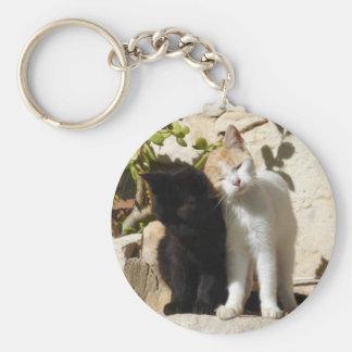 Gatitos blancos de abrazo preciosos del naranja y llavero redondo tipo pin