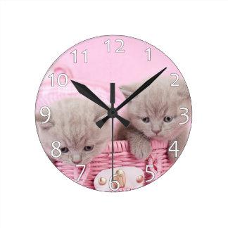 Gatitos británicos del shorthair reloj redondo mediano