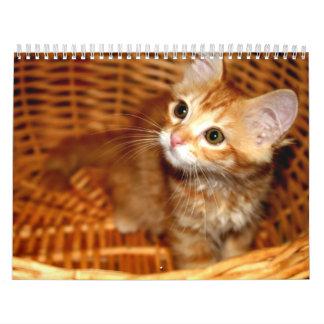 ¡Gatitos Calendarios