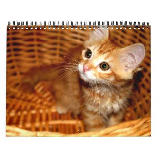 ¡Gatitos! Calendarios De Pared