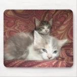 Gatitos cómodos alfombrilla de ratones