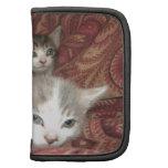 Gatitos cómodos organizador