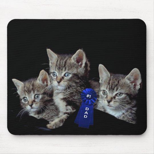 Gatitos con los ojos azules increíbles tapetes de ratón