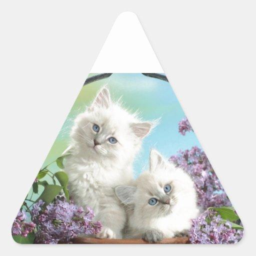 Gatitos curiosos pegatina triangular