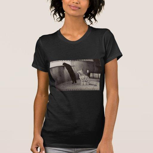 gatitos de espionaje camiseta