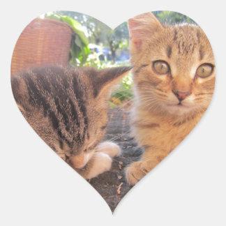 Gatitos de Fitsy y de Jaga Pegatina En Forma De Corazón