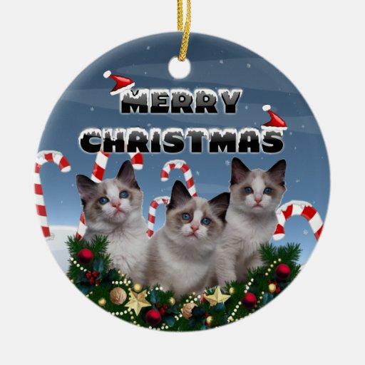 Gatitos de las Felices Navidad en tierra del bastó Adorno De Reyes