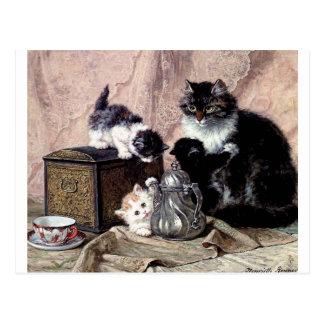 gatitos de los gatos que juegan la pintura antigua postal