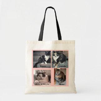 Gatitos de Sharon Dreyers en una bolsa de asas