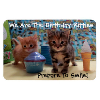 Gatitos del cumpleaños imán flexible de la foto 4