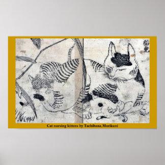 Gatitos del oficio de enfermera del gato por Tachi Poster