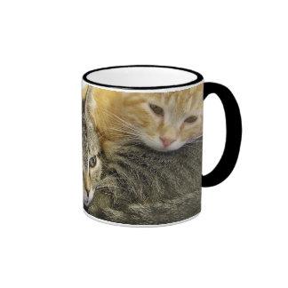Gatitos del refugio taza de café