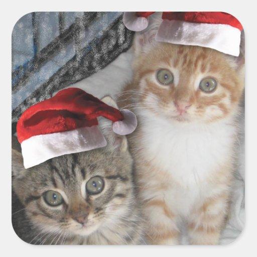 Gatitos del Tabby del navidad Colcomania Cuadrada