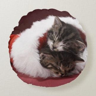 Gatitos dormidos junto en gorra del navidad