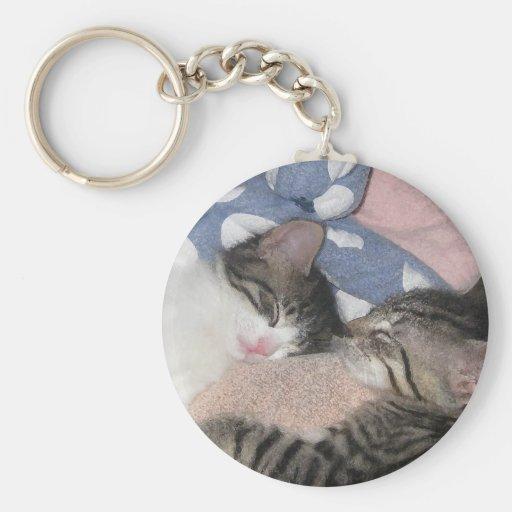 Gatitos dulces el dormir llaveros personalizados