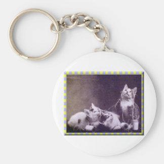Gatitos e hilado llavero redondo tipo pin